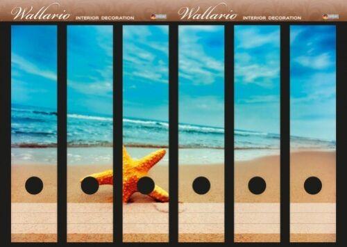 Wallario Ordnerrücken selbstklebend für 6 breite Ordner Seestern am Strand