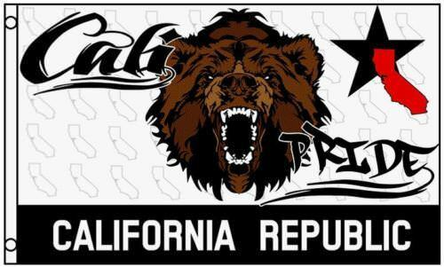 3x5 Cali Pride Flag Bear California State Republic CA Banner Pennant New