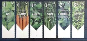 NUOVA Zelanda 2017 New Zealand frase SEMI SEED SEMI Basil CARROT carota Broccoli