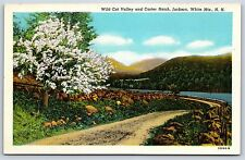 Wild Cat Valley and Carter Notch in Jackson, New Hampshire Linen Postcard New