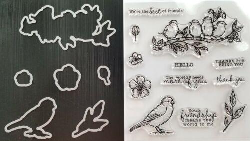 Birds FREE BIRD PHOTOPOLYMER STAMP SET /& FRAMELITS DIES Bird Friends Flowers