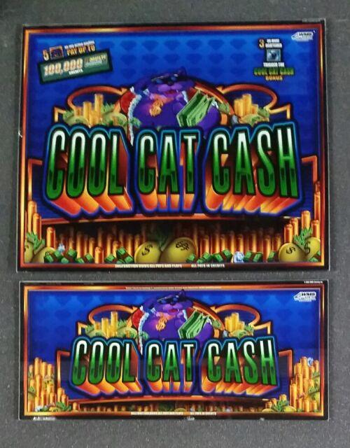 Cool Cat Cash Slot Machine