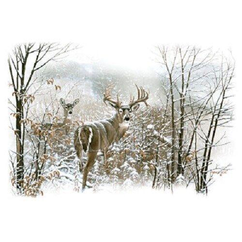 Dream Buck  Deer  Sweatshirt  Sizes//Colors