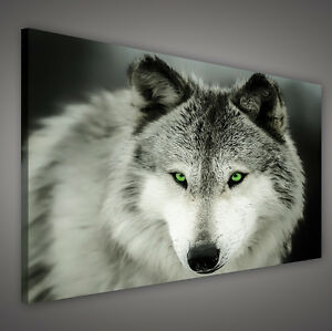 canvas wandbild leinwandbild bild foto tier wolf gr ne augen grau 3fx2073o1 ebay. Black Bedroom Furniture Sets. Home Design Ideas