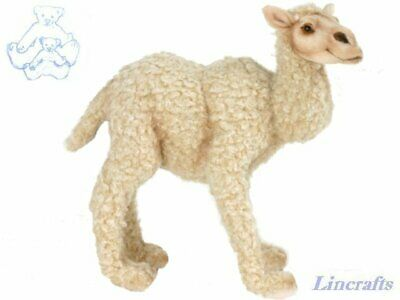 Hansa Baby Bacterian Camel 5588 Soft Toy Sold by Lincrafts Established 1993