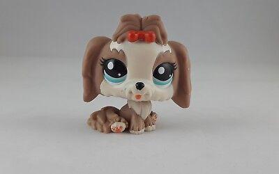 Littlest Pet Shop Lhasa Apso Mocha /& Cream Dog Blue Eyes #2130 Red Bow Cute
