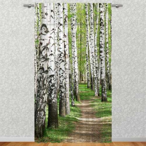 "Gardine /""Birkenwald/"" 135x245 cm » Fotovorhang bedrucktLa-Melle"