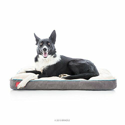 BRINDLE Soft Memory Foam Dog Bed with Removable Washable Cover  34 x 22in Khaki