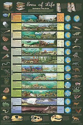 ERAS OF LIFE POSTER (91x61cm) GEOLOGICAL TIME SCALE EDUCATIONAL NEW LICENSED ART