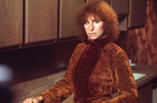 Barbra Streisand Celebrity Rare Exclusive 8 x 10 Photo 1246/'