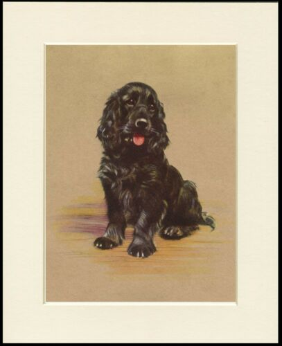 COCKER SPANIEL SEATED LITTLE DOG CHARMING DOG PRINT MOUNTED READY TO FRAME