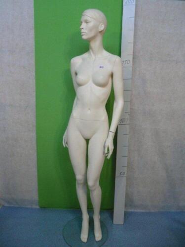 Mannequin Mannequin Doll Fashion Doll Female 3425