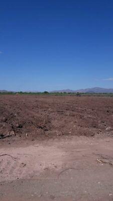 Aldama venta de 4.33 hectáreas recién desmontadas