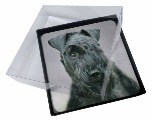 4x Kerry Blue Terrier Dog Picture Table Coasters Set in Gift Box, ADKB1C