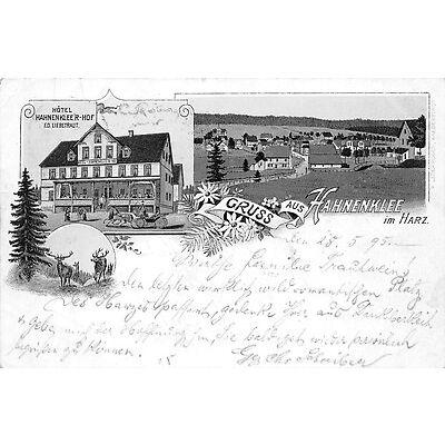 Litho. AK Gruss aus Hahnenklee Hotel Hahnenklee´r Hof Ed. Liebetraut AK ge. 1895