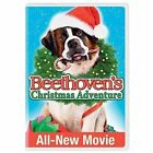 Beethoven's Christmas Adventure 0025192087684 With John Cleese DVD Region 1