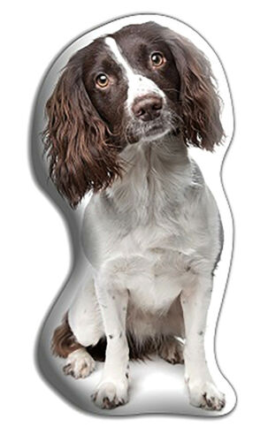 "Springer Spaniel Dog Gift – Beautiful Large 'Cuddle Cushion' approx 18"" x 16"""