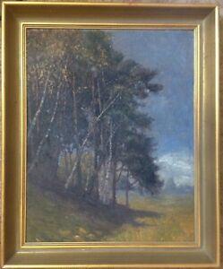 NEUMANN-1913-BIRKEN-AM-FELDRAND-IMPRESSIONIST-NORDDEUTSCH-ANTIK-WIESE-NATUR-OL