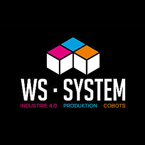 WS System