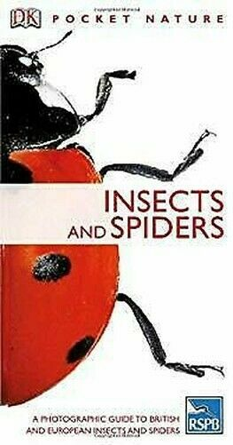 Insects Taschenbuch George C.