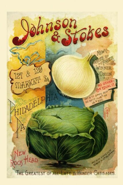 Philadelphia Food Market Onion Cabbages Vegetables Vintage Poster Repo FREE S/H