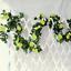2-X-8Ft-Artificial-Rose-Garland-Silk-Flower-Vine-Ivy-Wedding-Garden-String-Decor thumbnail 17