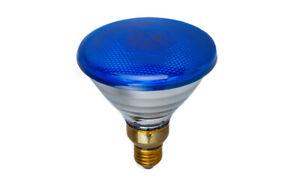 PAR38-Strahler-blau-230V-80W-E27-Flood-Reflektor-Lampe-Pressglasstrahler-Spot