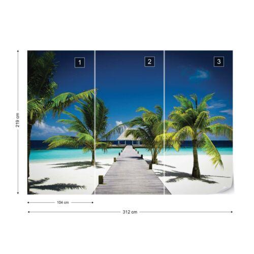 Papier peint photo Papier peint photo facile installer Polaire PLAGE chemin de sable de mer vue