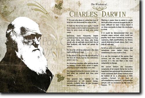 Poster Art Print Photo Gift Motivation CHARLES DARWIN The Wisdom of..