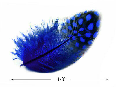 NAVY BLUE Guinea Hen Plumage Feather Trim 1 Yard