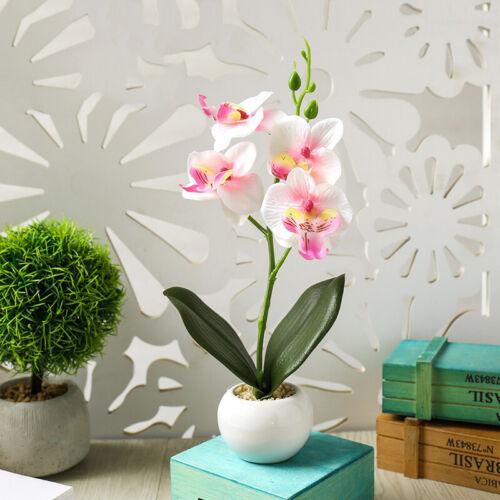 Künstliche Orchidee Im Topf Kunst Blumen Orchideen Phalaenopsis Pflanze  ~