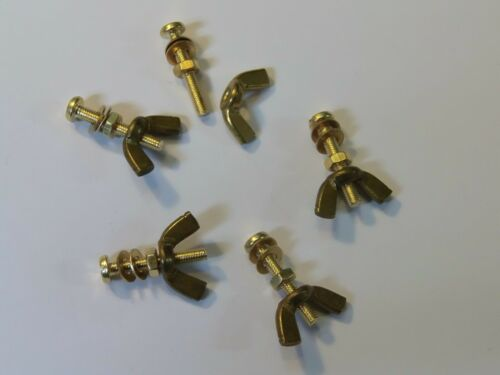 M3X20 BRASS PAN HEAD BOLTS NUTS /& WASHERS /& WING NUTS PACK 0F 5 BRASS SET SCREWS