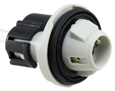 Hatchback Wells 865 Side Marker Light Socket-SVT