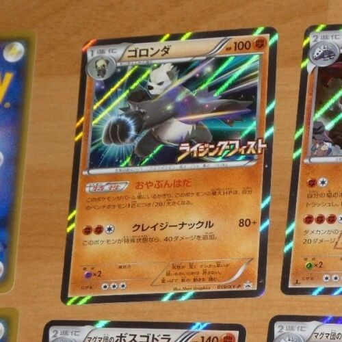 POKEMON JAPANESE CARD HOLO CARTE PANGORO Holo Promo 059//XY-P JAPAN NM