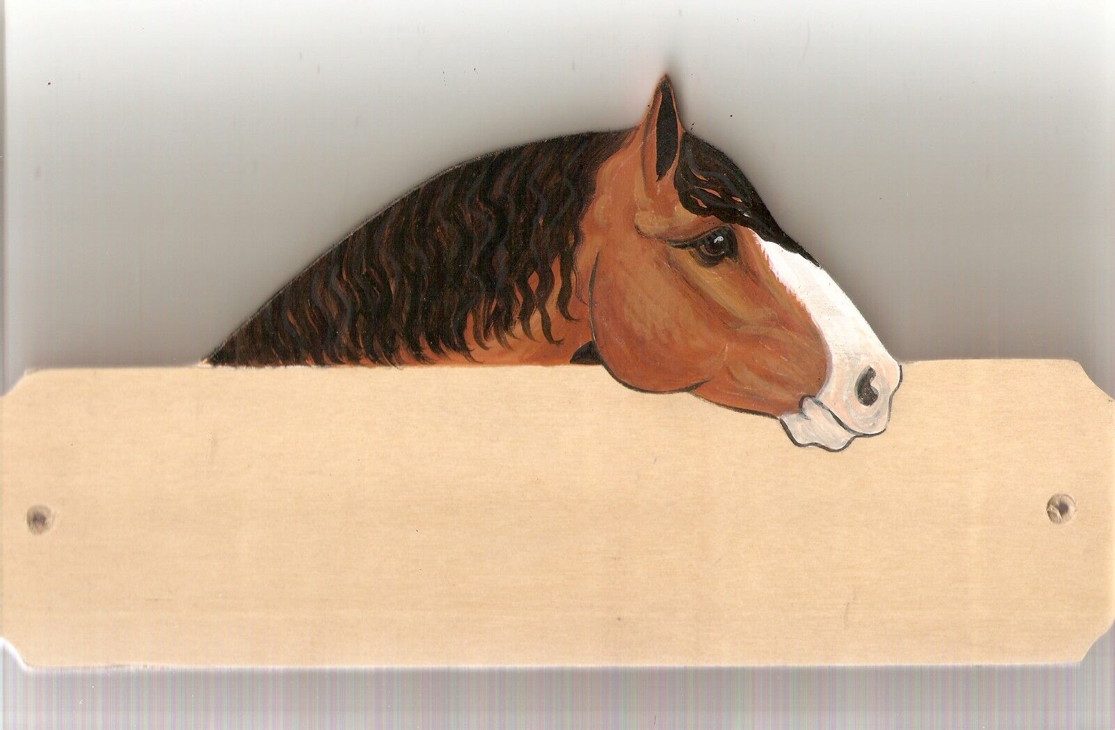 Heavy horse stable stall barn name plate plaque sign personalised gift