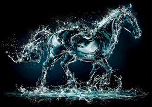 WATER-HORSE-POSTER-PRINT-VINYL-WALL-STICKER-VARIOUS-SIZES