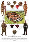 PLANCHE UNIFORMS PRINT WWII France Unité de Forteresse et de Génie Infanterie