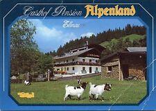 Alte Postkarte - Gasthof Pension Alpenland Ellmau