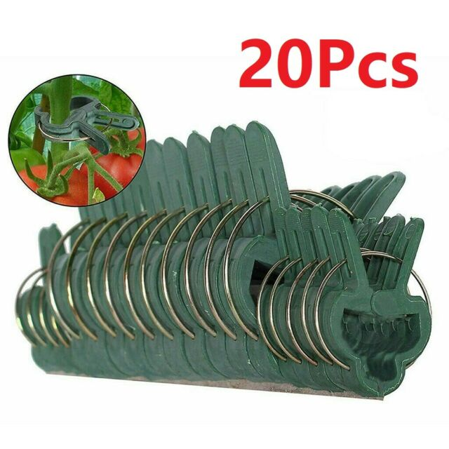 Flower Vine Garden Tomato Supporting Stems, 60 Plant Cages /& Supports Pcs Clips
