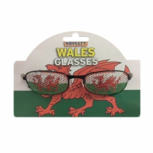 Davids Day Welsh Supporters Accessory Funny Novelty Wales Glasses St