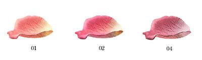 Les Merveilleuses Collection LADUREE Face color Rose Cheek Full set Japan