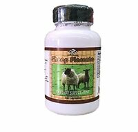 Sheep Placenta Complex, 100 Capsules With Grape Seed, Collagen, Vitamin E Zinc