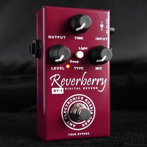 AMT-Electronics-RY-1-Reverberry-Digital-Reverb-Pedal