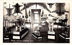 B9-Warren-New-Hampshire-NH-RPPC-Postcard-c30s-Morse-Museum-Taxidermy-Interior-1
