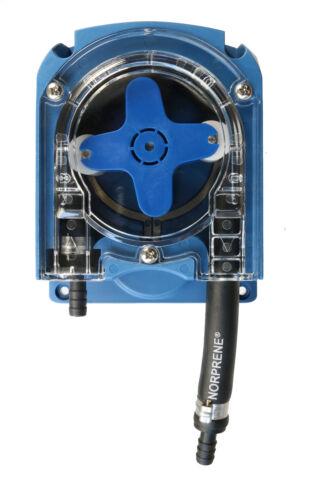 environ 20.32 cm Forge Padlock Bolt Black Powder Coated 200 mm fgepbltblk 8 8 in