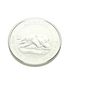 8-Dollar-1-5-oz-Silberdollar-Polar-Baer-Kanada-2013