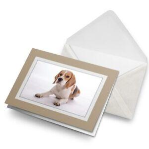 Greetings-Card-Biege-Beagle-Dog-Pet-Puppy-Cute-Animal-15524