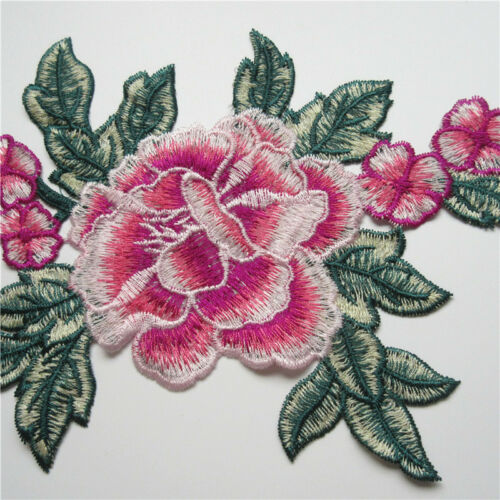 Flower Embroidered Applique Sew Patches Badge Neckline Collar Transfer Lace Trim
