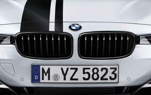 SPORT PERFORMANCE GRIGLIA ANTERIORE renale frase Exclusiv per BMW f20 f21 anno 11-15