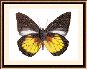 Butterfly-8509-Cross-Stitch-Kit